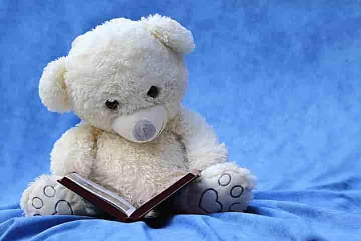 本を読むクマさん